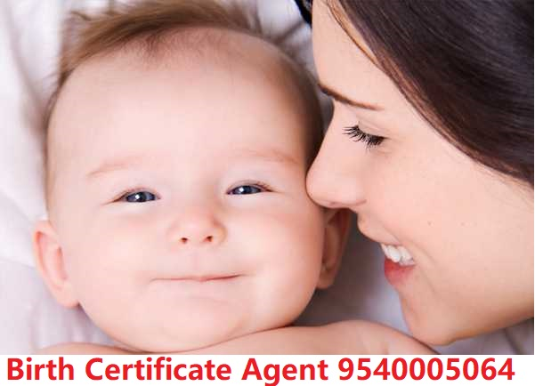 birth certificate in noida
